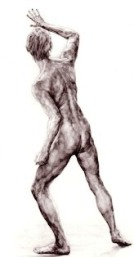 Drawing, Neil Harvey, male nude backview