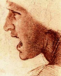 Paintings: Head of a warrior, Da Vinci drawing