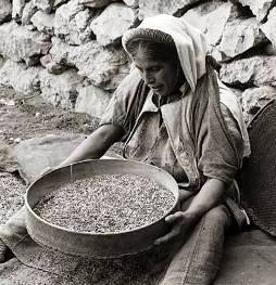 Middle Eastern woman sifting grain