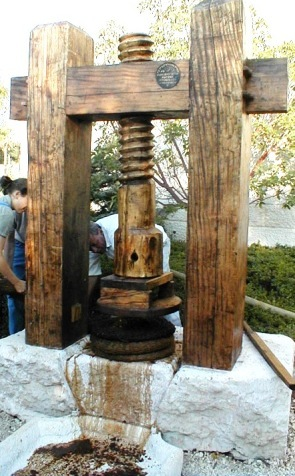Ancient technology: large wooden screw used as an olive press