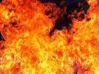 sacrifice_flames_140