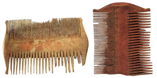 WOMEN IN THE BIBLE: WOODEN COMBS
