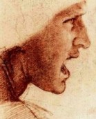 Head of a warrior, Da Vinci