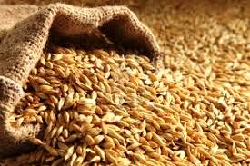 Asenath & Joseph: Over-flowing bag of grain