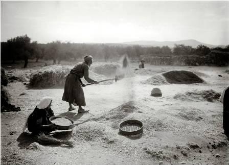Farmers winnowing grain