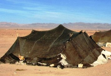 Tents of nomadic tribal herdsmen