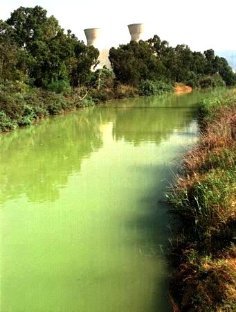 The modern-day Wadi Kishon, the river in which the priests of Baal were drowned