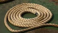 Delilah & Samson: a length of new rope