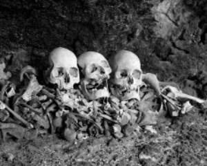 A pile of skulls and bones