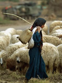A woman takes her flock to the well.