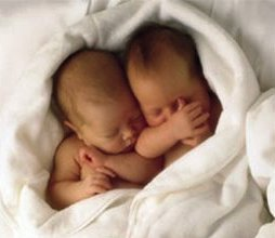 Twin babies sleeping