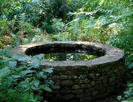Stone well with still water reflecting greenery
