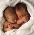 Twin babies, newborn