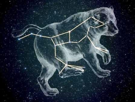 The stars of Ursa Major (the Great Bear)