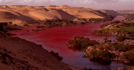 The waters of the Nile seemed to turn into blood