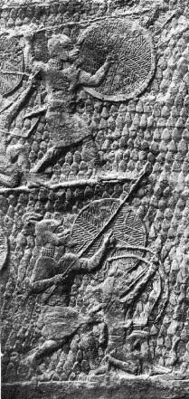 Image of shields with wicker backing
